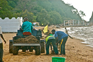V-Tractor Cleanup on Lake Malawi