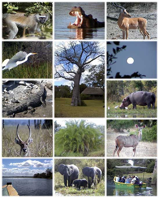 National parks of Malawi